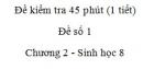 Đề kiểm tra 45 phút (1 tiết) - Đề số 1 - Chương 2 - Sinh học 8