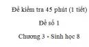 Đề kiểm tra 45 phút (1 tiết) - Đề số 1 - Chương 3 - Sinh học 8