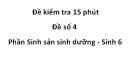 Đề kiểm tra 15 phút -  Đề số 4 - Phần Sinh sản sinh dưỡng - Sinh 6