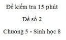 Đề kiểm tra 15 phút - Đề số 2 - Chương 5 - Sinh học 8