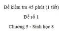 Đề kiểm tra 45 phút (1 tiết) - Đề số 1 - Chương 5 - Sinh học 8
