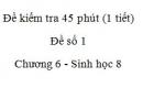 Đề kiểm tra 45 phút (1 tiết) - Đề số 1 - Chương 6 - Sinh học 8