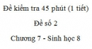 Đề kiểm tra 45 phút (1 tiết) - Đề số 2 - Chương 7 - Sinh học 8