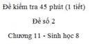 Đề kiểm tra 45 phút (1 tiết) - Đề số 2 - Chương 11 - Sinh học 8