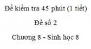 Đề kiểm tra 45 phút (1 tiết) - Đề số 2 - Chương 8 - Sinh học 8