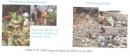 Bài 4 trang 91 Tài liệu Dạy - học Hoá học 9 tập 2