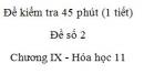 Đề kiểm tra 1 tiết (45 phút) - Đề số 2 - Chương IX - Hóa học 11