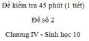 Đề kiểm tra 45 phút (1 tiết) - Đề số 2 - Chương IV - Phần 2 - Sinh học 10