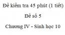 Đề kiểm tra 45 phút (1 tiết) - Đề số 5 - Chương IV - Phần 2 - Sinh học 10