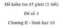 Đề kiểm tra 45 phút (1 tiết) - Đề số 3 - Chương II - Phần 2 -  Sinh học 10