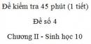 Đề kiểm tra 45 phút (1 tiết) - Đề số 4 - Chương II - Phần 2 -  Sinh học 10