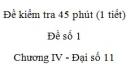 Đề kiểm tra 45 phút (1 tiết) - Đề số 1 - Chương 4 - Đại số  và Giải tích 11