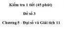 Đề kiểm tra 45 phút ( 1 tiết) - Đề số 3 - Chương 5 - Đại số và Giải tích 11