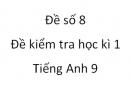Đề số 8 - Đề kiểm tra học kì 1 - Tiếng Anh 9 mới