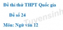 Đề số 24 - Đề thi thử THPT Quốc gia môn Ngữ văn
