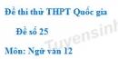 Đề số 25 - Đề thi thử THPT Quốc gia môn Ngữ văn