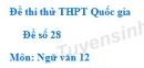 Đề số 28 - Đề thi thử THPT Quốc gia môn Ngữ văn
