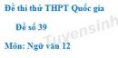 Đề số 39 - Đề thi thử THPT Quốc gia môn Ngữ văn