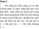 Tập làm văn: Luyện tập tả cảnh trang 34 SGK Tiếng Việt 5 tập 1