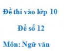 Đề số 12 - Đề thi vào lớp 10 môn Ngữ văn