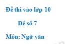 Đề số 7 - Đề thi vào lớp 10 môn Ngữ văn