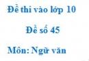 Đề số 45 - Đề thi vào lớp 10 môn Ngữ văn
