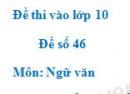 Đề số 46 - Đề thi vào lớp 10 môn Ngữ văn