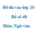 Đề số 48 - Đề thi vào lớp 10 môn Ngữ văn