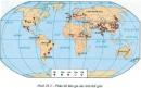 Dựa vào hình 29.3, em có nhận xét gì về sự phân bố đàn gia súc trên thế giới?