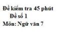 Đề số 1 - Đề kiểm tra 45 phút (1 tiết) - Học kì 1 - Ngữ văn 7