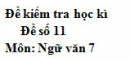 Đề số 11 - Đề thi học kì 2 - Ngữ văn 7