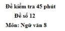 Đề số 12 - Đề kiểm tra 45 phút (1 tiết) - Học kì 1 - Ngữ văn 8
