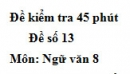 Đề số 13 - Đề kiểm tra 45 phút (1 tiết) - Học kì 2 - Ngữ văn 8