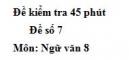 Đề số 7 - Đề kiểm tra 45 phút (1 tiết) - Học kì 2 - Ngữ văn 8
