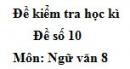 Đề số 10 - Đề thi học kì 2 - Ngữ văn 8