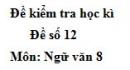 Đề số 11 - Đề thi học kì 2 - Ngữ văn 8
