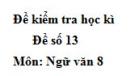 Đề số 13 - Đề thi học kì 2 - Ngữ văn 8