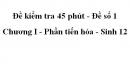 Đề kiểm tra 45 phút (1 tiết) - Đề số 1 - Chương I - Phần tiến hóa - Sinh 12