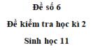 Đề số 6 – Đề kiểm tra học kì 2 – Sinh 11