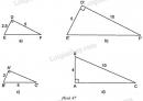 Trả lời câu hỏi Bài 8 trang 81 SGK Toán 8 Tập 2