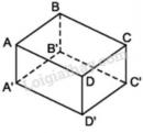 Trả lời câu hỏi Bài 1 trang 96 SGK Toán 8 Tập 2