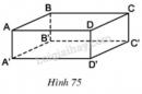 Trả lời câu hỏi 1 Bài 2 trang 98 SGK Toán 8 Tập 2