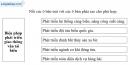 Bài 4 trang 97 vở bài tập Địa lí 9
