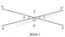 Trả lời câu hỏi 3 Bài 1 trang 81 SGK Toán 7 Tập 1
