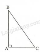Trả lời câu hỏi 3 Bài 1 trang 107 SGK Toán 7 Tập 1