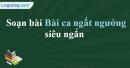 Soạn Bài ca ngất ngưởng - Nguyễn Công Trứ siêu ngắn
