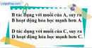 Câu 3 phần bài tập học theo SGK – Trang 65 Vở bài tập hoá 9
