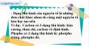 Câu 1 phần bài tập học theo SGK – Trang 80 Vở bài tập hoá 9