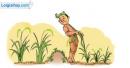 """Bài 2 - Nghe và kể lại câu chuyện """" Kéo cây lúa lên"""""""