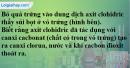 Câu 5 phần bài tập học theo SGK – Trang 44 Vở bài tập hoá 8